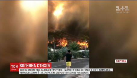 Крупный пожар охватил леса на юге Турции