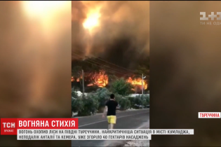 В Турции вблизи курортов огнем сильно охватило леса
