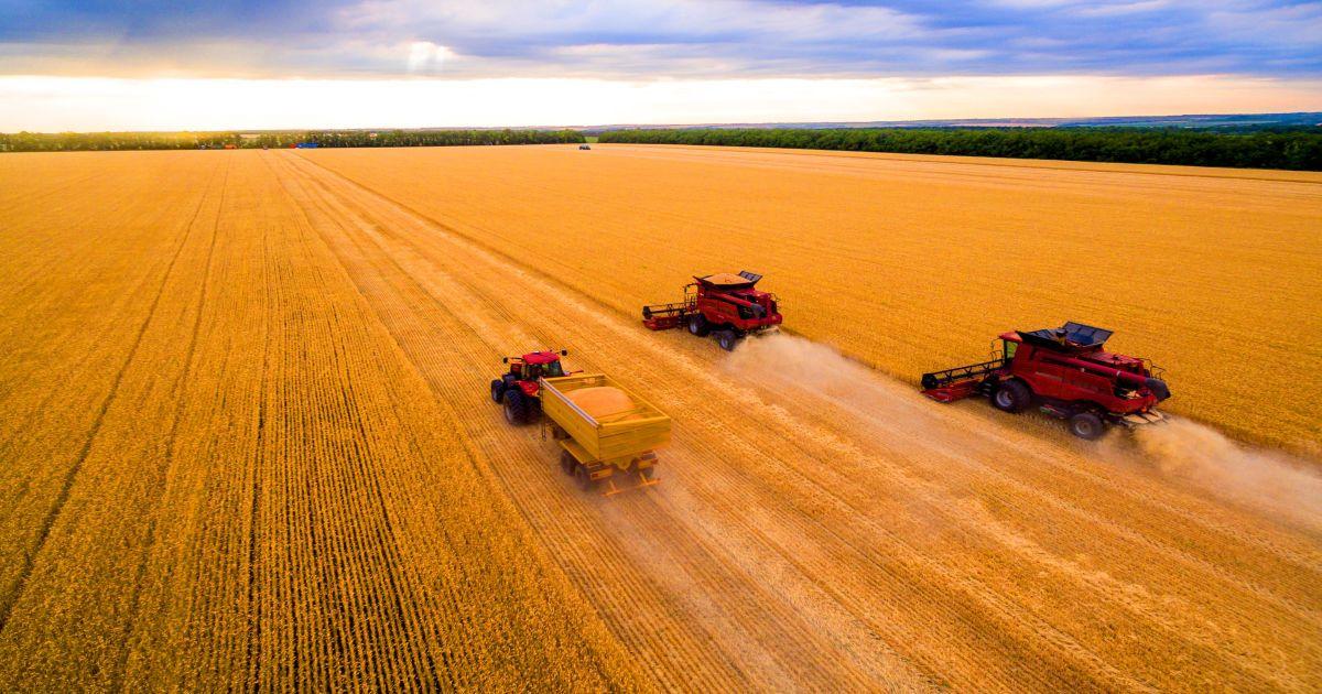 Они кормят мир: Пять фактов об украинском агропромышленном комплексе