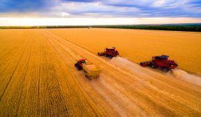 Вони годують світ: П'ять фактів про український агропромисловий комплекс