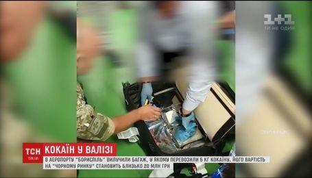 """В """"Борисполе"""" служебная собака обнаружила чемодан с 5 кг кокаина"""