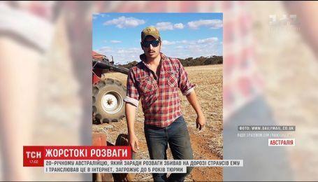 В Австралии арестовали мужчину, который умышленно давил на своем внедорожнике страусов Эму