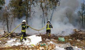 В Киеве загорелись Русановские сады