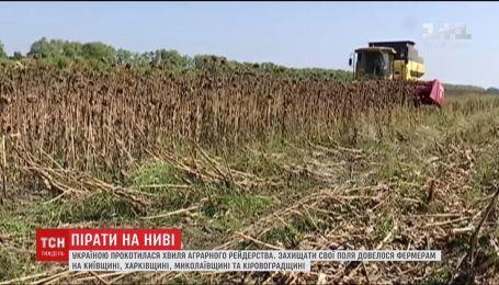 По Украине прокатилась волна аграрного рейдерства