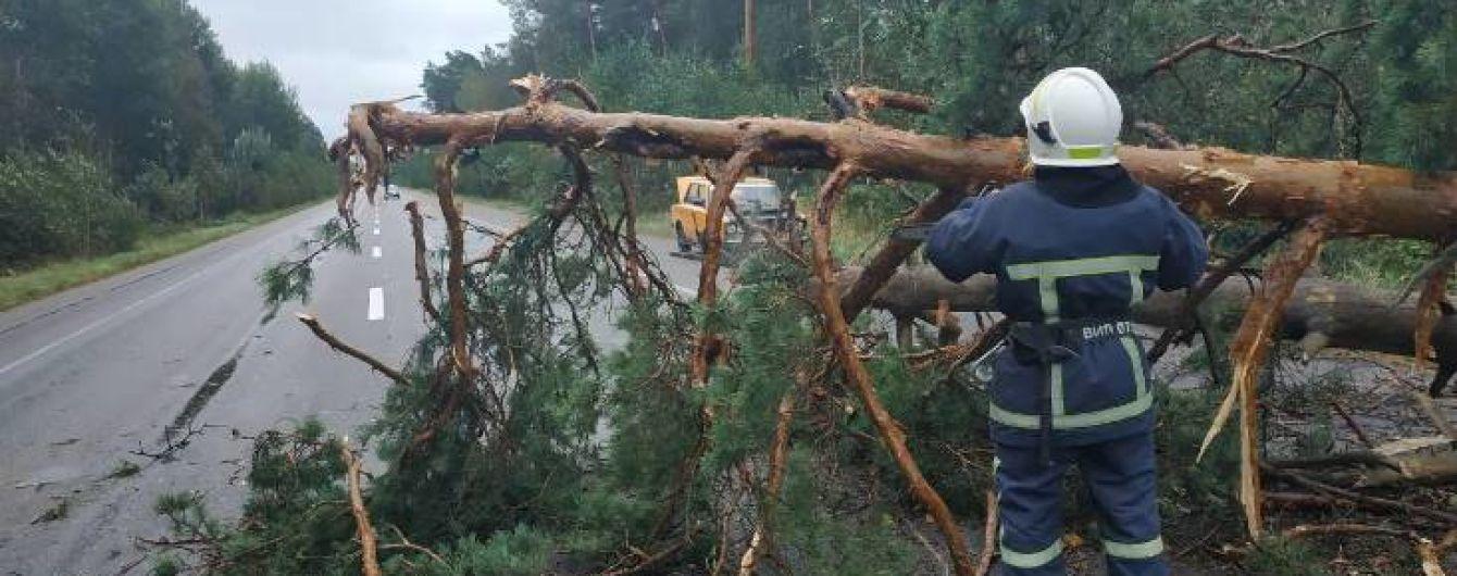 Вырванные деревья и изуродованные здания. Непогода в Украине будет только усиливаться