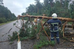 Вирвані дерева та понівечені будівлі. Негода в Україні лише посилюватиметься
