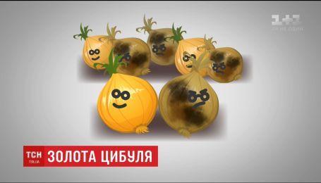 Вартість цибулі в Україні побила історичний рекорд