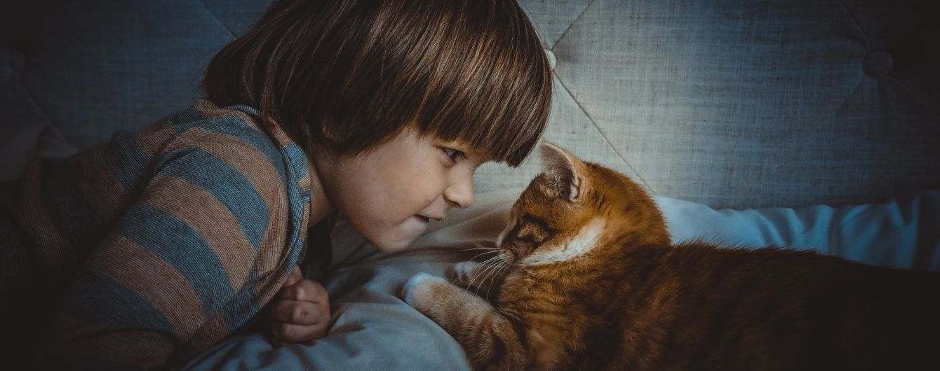 Очередной миф опровергнут: Супрун стала на защиту животных в домах с маленькими детьми