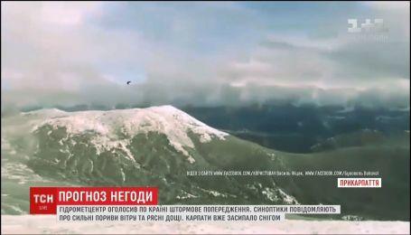 Последствия непогоды: Карпаты засыпает снегом, а в Одессе мощный ураган поломал деревья