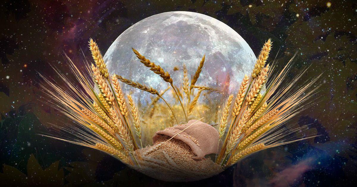 """Як скористатися з """"врожайної"""" повні 25 вересня"""
