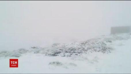 Карпаты засыпает снегом. За сутки в высокогорье намело 10-сантиметровый настил
