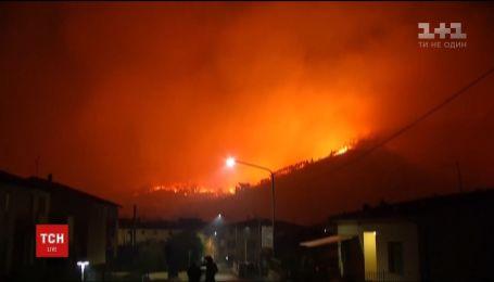 В Италии пламя уничтожило 600 гектаров леса неподалеку города Пиза