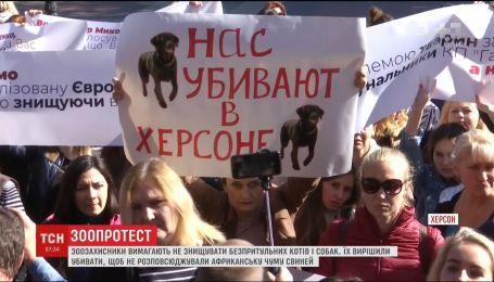 В Херсоне зоозащитники вышли на протест против убийства животных