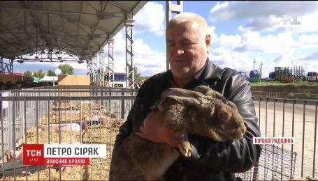 На Кировоградщине проходит крупнейшее украинское агро-пати