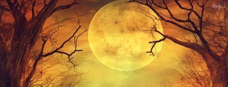 Сложно будет всем: солнечные и лунные затмения лета 2020 года
