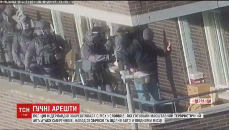 Масштабная антитеррористическая операция в Нидерландах. Полиция арестовала экстремистов
