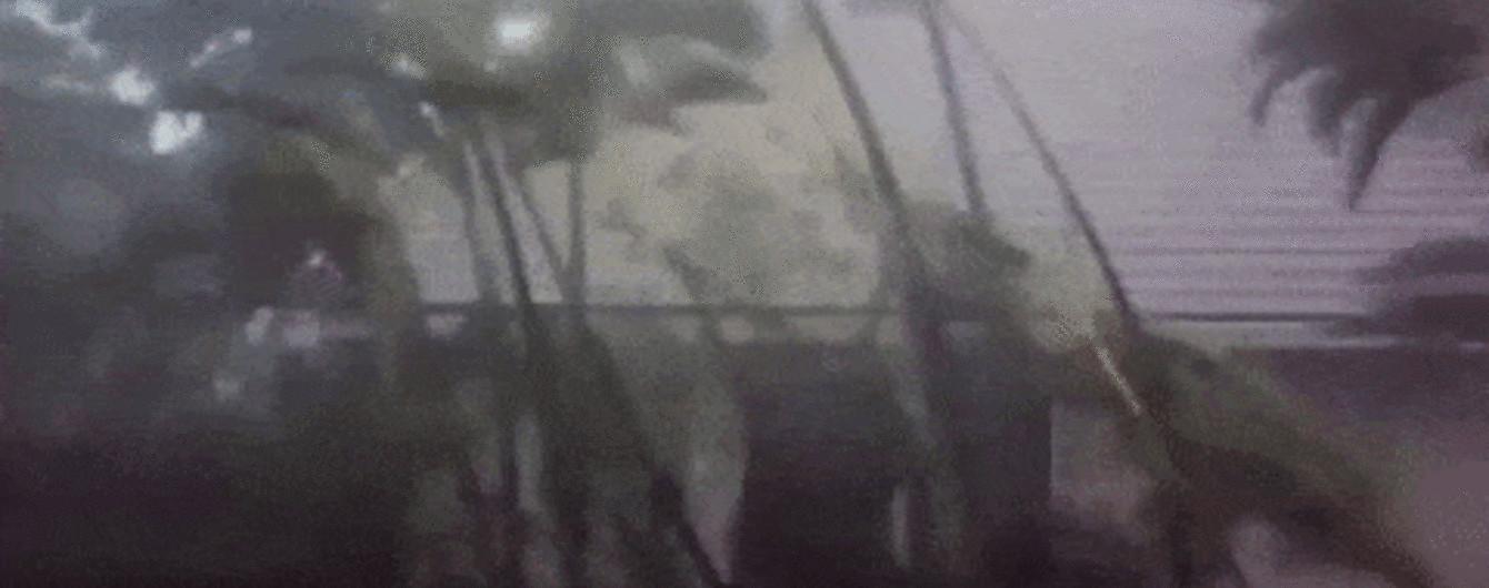 """Обесточенные дома и полсотни жертв: по Японии несется тайфун """"Трами"""""""
