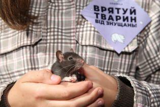 """""""Твоя шуба кричала перед смертю"""". Українці вийшли на марш за права тварин"""