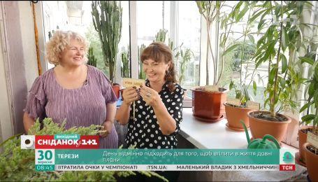 Наталія Підлісна поєднала на балконі олеандри, кактуси та ялівці – Турнір балконів