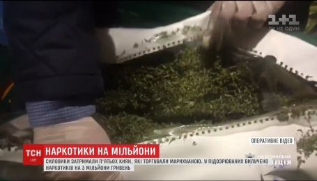 Наркотиков на 3 миллиона гривен изъяли силовики в Киевской и Черкасской областях