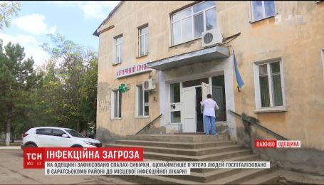 На Одещині зафіксували спалах сибірки