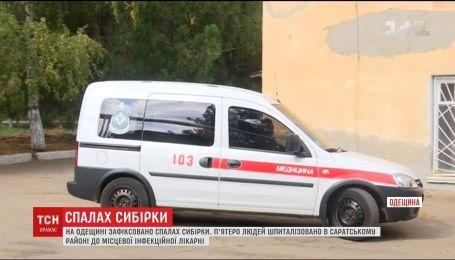 На Одесщине у мужчины подтвердили заболевание сибирской язвой