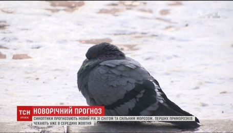 Синоптики повідомили, коли українцям чекати перших приморозків