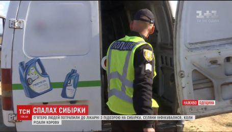 Двотижневий карантин ввели в селі на Одещині, де зафіксували спалах сибірки