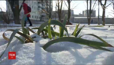 Синоптики дали прогноз на прийдешню зиму