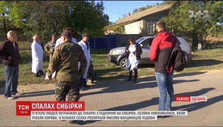 Сибірка на Одещині: у селі, де сталося зараження людей, запровадили карантин