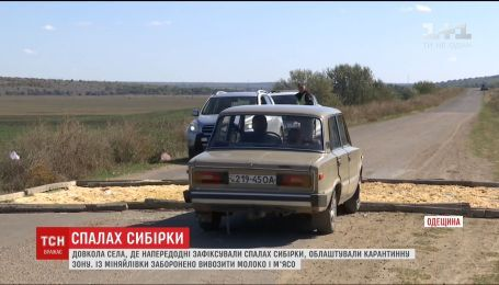 П'ятикілометрову карантинну зону облаштували довкола села на Одещині, де зафіксували спалах сибірки