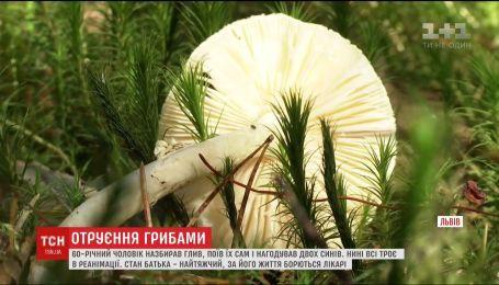 Мужчина с двумя сыновьями полакомились грибами и попали в реанимацию