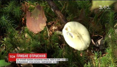 Полакомились грибами и теперь в реанимации: на Львовщине отравились три человека