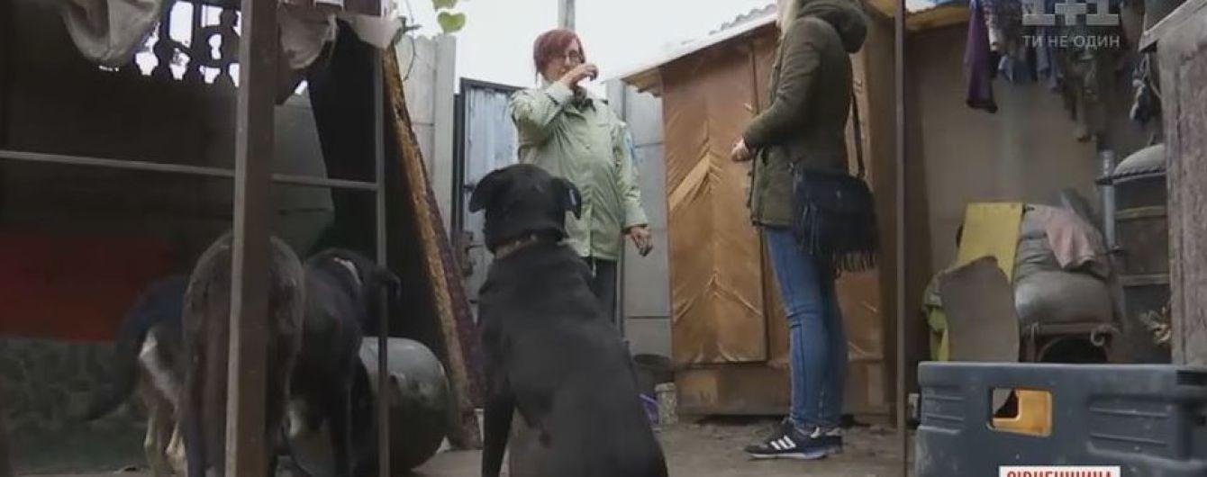 На Рівненщині жінка спить просто неба, бо в своєму будинку прихистила сотню собак