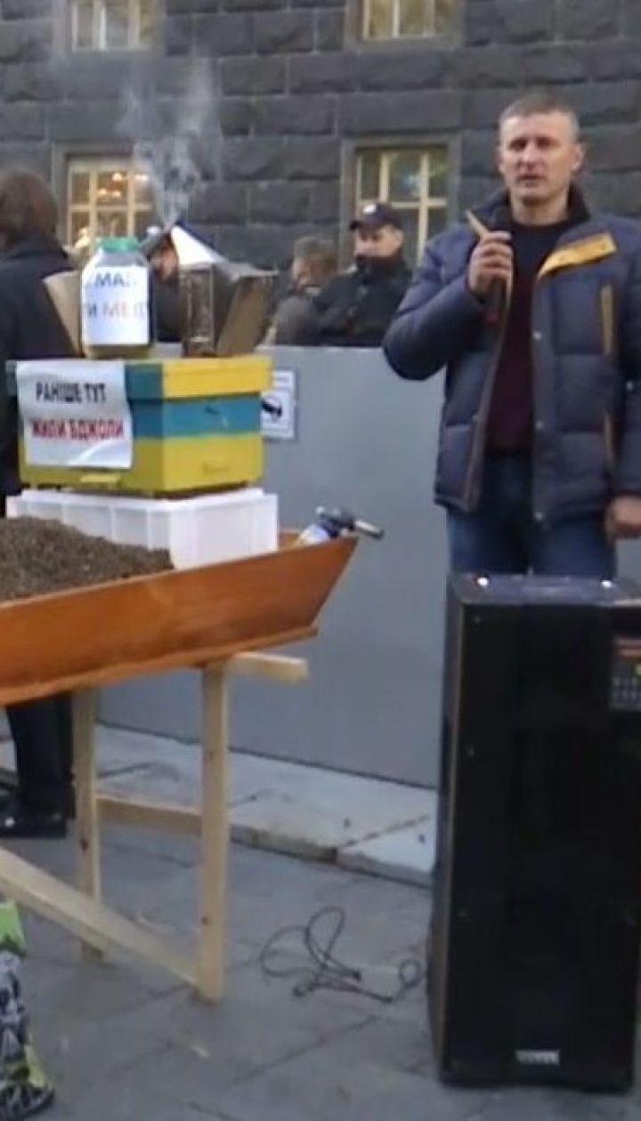 На митинг к Кабмину люди вышли из-за массовой гибели пчел
