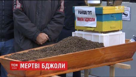 Українські пасічники принесли під урядові будівлі труну з мертвими бджолами