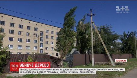 Дерево, которое спиливали работники училища, убило женщину с недостатками слуха