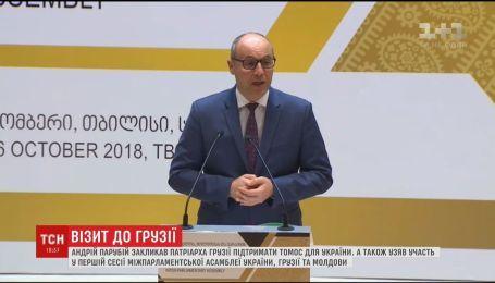 Парубий попросил патриарха Грузии поддержать Томос для Украины