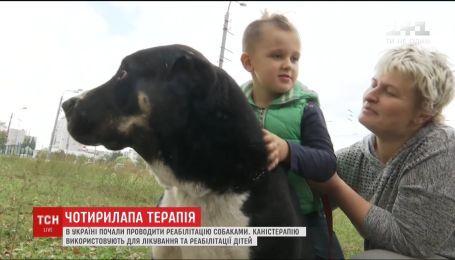 В Україні набирає популярності каністерапія - реабілітація дітей з допомогою собак