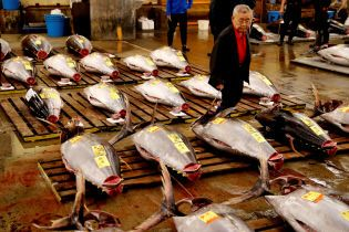 В Токио закрылся крупнейший в мире рыбный рынок