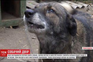 Харьковчанка развела в квартире 20 собак и не выпускает их гулять во двор