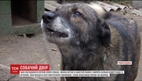 На Ровенщине женщина держит дома более сотни собак