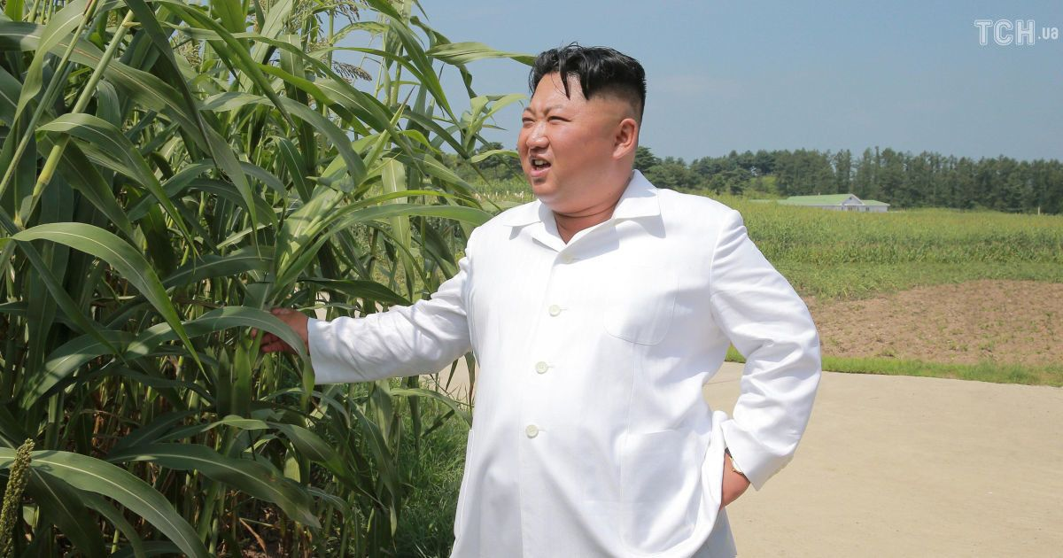 Инспектор Ким Чен Ын: северокорейский диктатор посетил коровью ферму