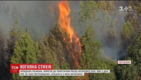 Неподалік Лісабона загорілися ліси