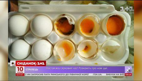 Яйца с плесенью и грибком: куда обратиться, если приобретенный товар оказался некачественным