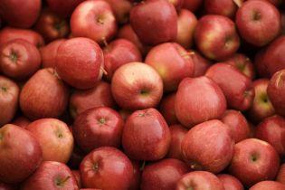Яблука на сніданок: чотири найкращих поєднання