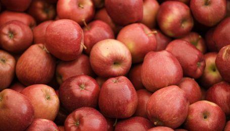 Яблоки на завтрак: четыре лучших сочетания