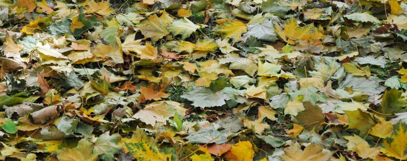 Синоптики спрогнозували, коли в Україну прийде холодна осінь