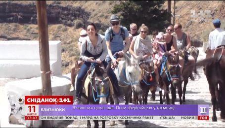 В Греции взялись защищать ослов от туристов с избыточным весом