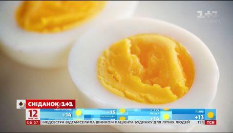 Найцікавіші факти про яйця